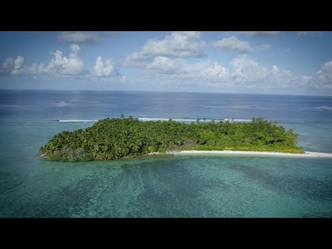 Protecting the Environment of the British Indian Ocean Territory