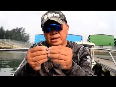 How To Do Tenya Fishing In Singapore?