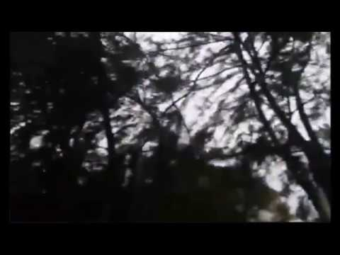 Hurricane Maria Dominican Republic Video - Hurricane Maria Santo Domingo, Punta Cana, Altagracia