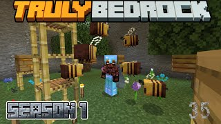 Truly Bedrock Episode 35: Bees!