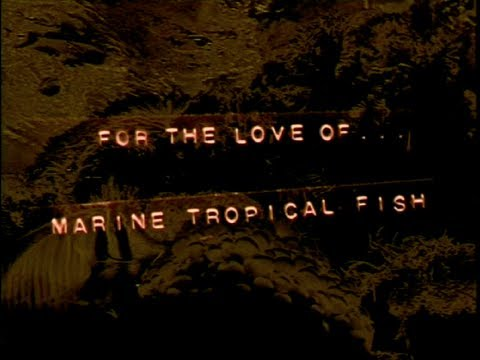 Jon Ronson's For The Love of Marine Tropical Fish