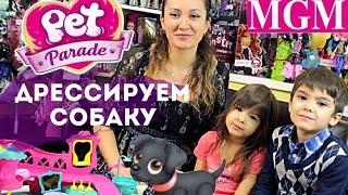 Парад питомцев! Дрессируем собаку на игрушечной площадке! Pet Parade обзор на русском ★MGM★