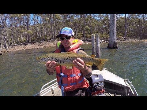 Trout Fishing Tasmania, Woods Lake.