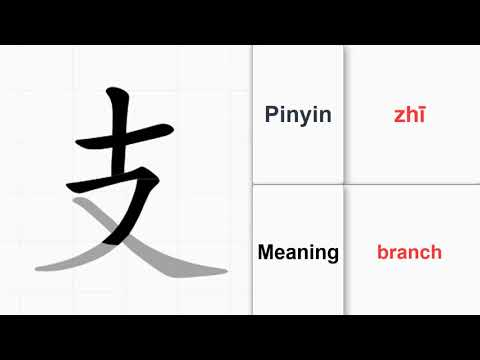 How to write 214 Chinese Radicals - branch (zhī) (no.65) |Learn Chinese from A-Z