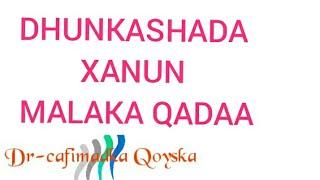 Dhuuqmada Afka Video in MP4,HD MP4,FULL HD Mp4 Format - PieMP4 com