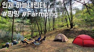 인제 하늘내린터 팜핑 | 어린이날 캠핑 | 농산물 수확…