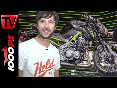 Kawasaki Z650 2017 - ER-6N Nachfolger | Nasty Nils Motorrad Neuheiten 2017