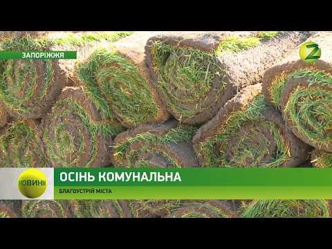 Телеканал Z: Новини Z -  У Запоріжжі продовжують впроваджувати міську програму з благоустрою міста - 19.09.17