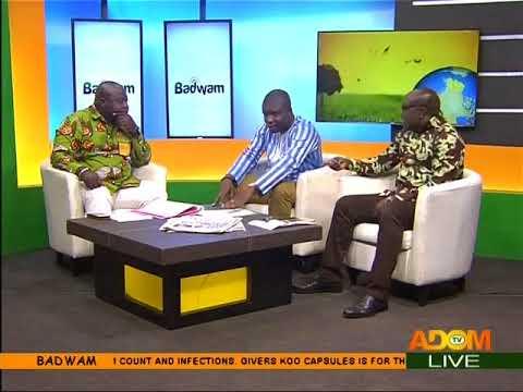 Prosecute corrupt officials in your own gov't  - Badwam Mpensenpensenmu on Adom TV (18-8-17)
