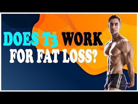 Does T3 Work for Fat Loss?
