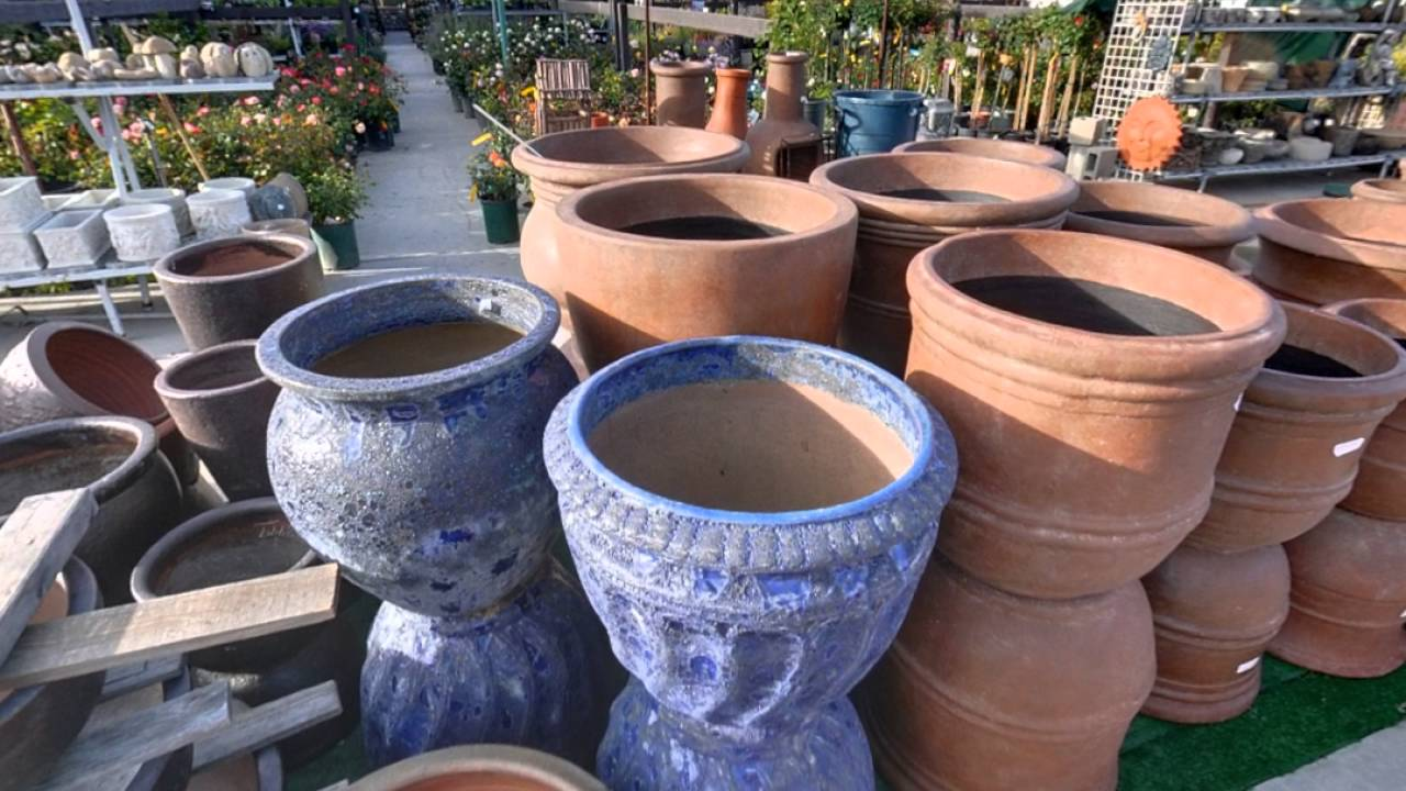 Green Thumb Nursery Hardware Patio Ventura Ca Garden Centers