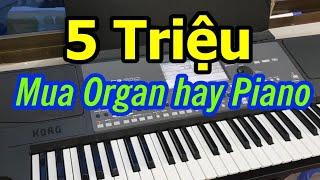 5 Triệu nên mua Organ hay Piano (Mục Đích mới là quan trọng)