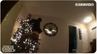 Christmas Tree Slam DUNK