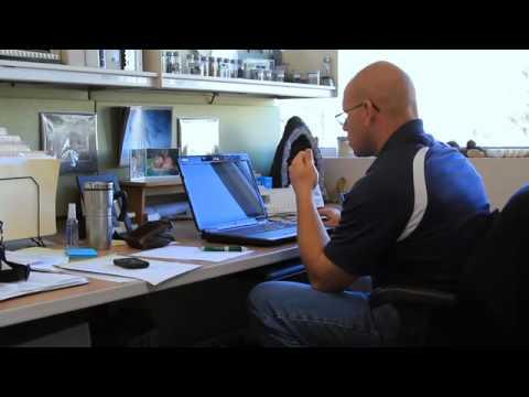 Dave Giles - Environmental Manager, Phoenix
