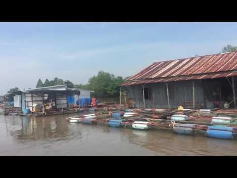 long-boat ride part 2 - Fish Farms !!