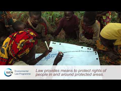 Protecting biodiversity through law