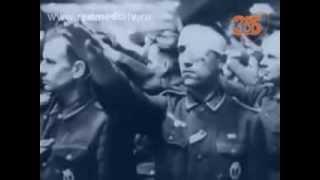 Курская дуга: наше лето. Рассказ военного историка.