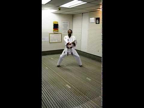 Ni Ju Hiza Waza 27 Hand Movements-Tillman Ryu Karate Do