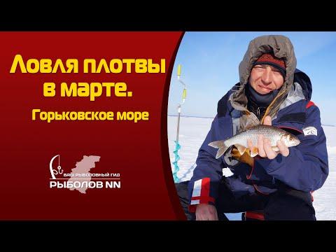 ловля плотвы зимой на мормышку на горьковском море