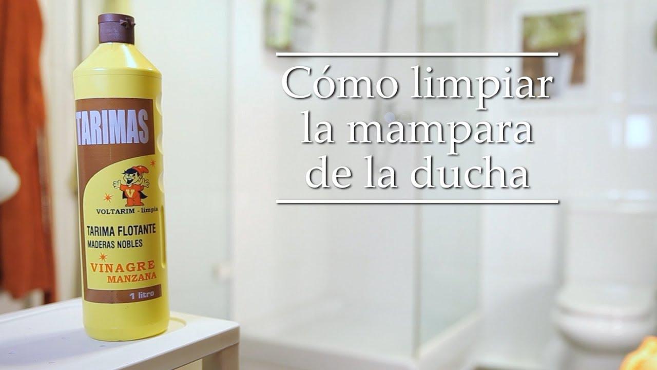 Productos Para Limpiar Mamparas De Ducha.Como Limpiar La Mampara De La Ducha Tarimas Voltarim Vinagre De Manzana