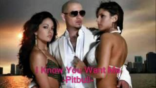 "Pitbull ""I Know You Want Me"" (new hot exclusive dance song 2009)"
