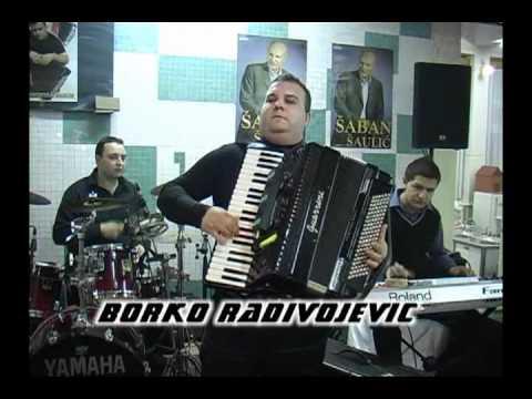 Borko Radivojevic TIGROVI