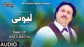 Raees Bacha | Lewanai Lewanai | Pashto Audio Songs 2020 | Pashto Mp3 Songs | Pashto Beats Music