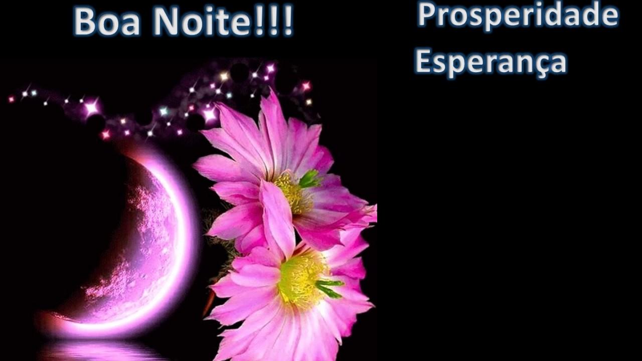 Te Envio A Flor De Boa Noite!