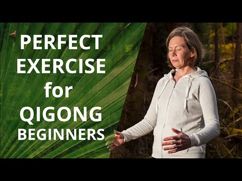 The Perfect Qigong Exercise For Beginners