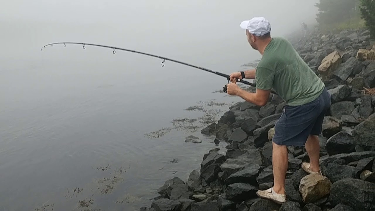 Striper fishing the cape cod canal youtube for Cape cod canal fishing report