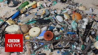 Island's rubbish density 'world's worst'   BBC News