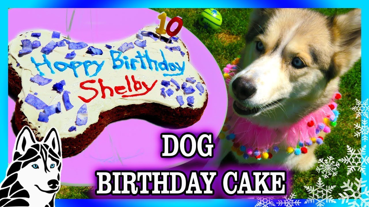 DIY DOG BIRTHDAY CAKE