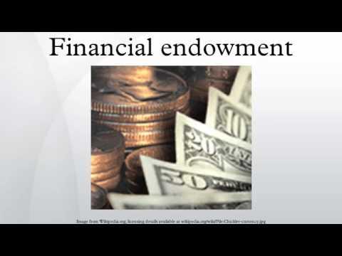 Financial endowment