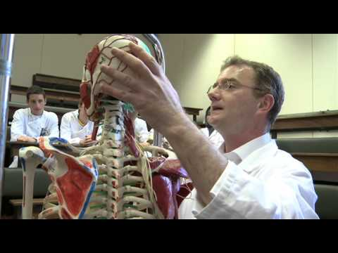 Studying Anatomy at NUI Galway