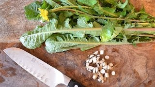How to harvest, prepare, and use dandelion leaf and root for beauty and health