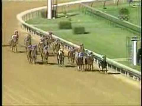 War Emblem - 2002 Kentucky Derby