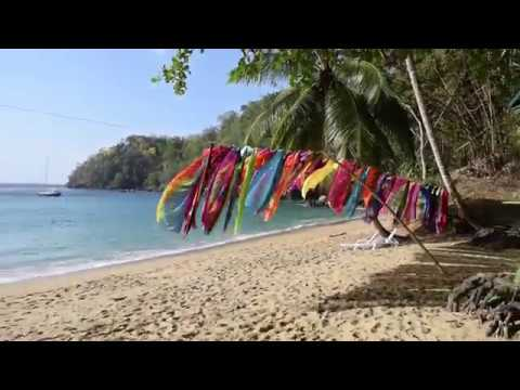 My trip to Tobago Island