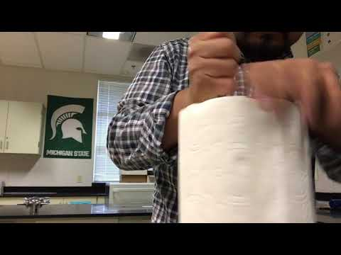 How to Remove Core From Paper Towel Roll