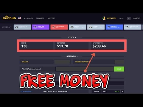 how to put in money code on skinhub