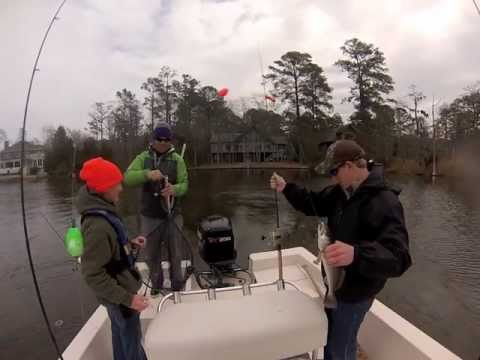 Casting/Trolling Tactics for Speckeled Trout