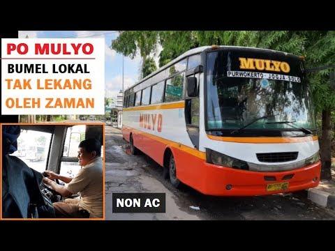 JATENG GAYENG! Keramahan Ala Bumel Legend |Trip Naik PO Mulyo
