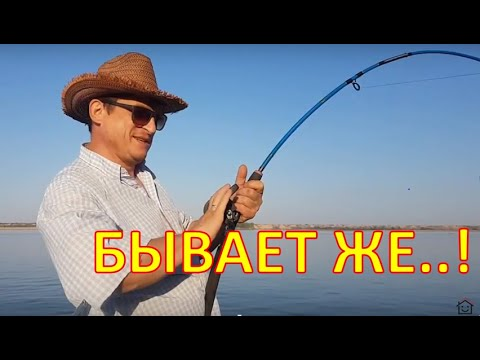 Борьба с речным монстром. Нижняя Волга тур