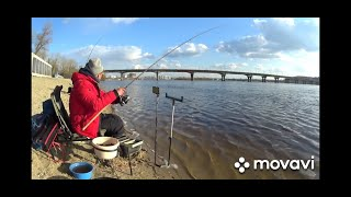 Гидропарк Золотой Рыбалка на фидер с подписчиком Привет хейтерам 08 04 2021г