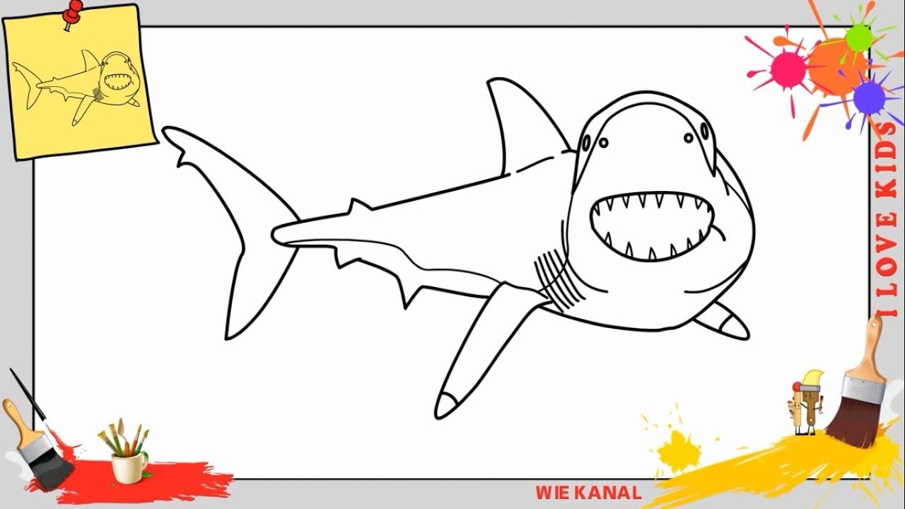 Berühmt Weißer Hai Anatomie Galerie - Menschliche Anatomie Bilder ...