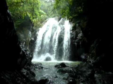 徳之島のタキンシャ(大瀬川の滝)