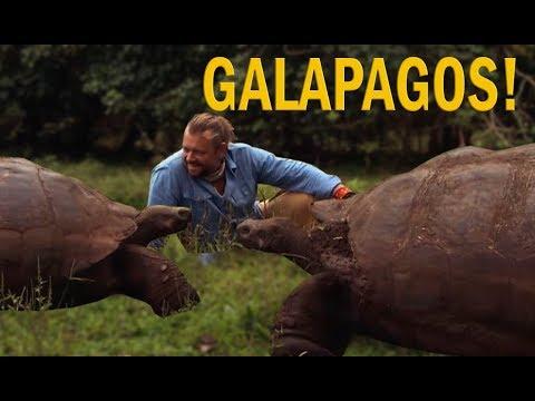 GALÁPAGOS, A ILHA DE DARWIN | RICHARD RASMUSSEN