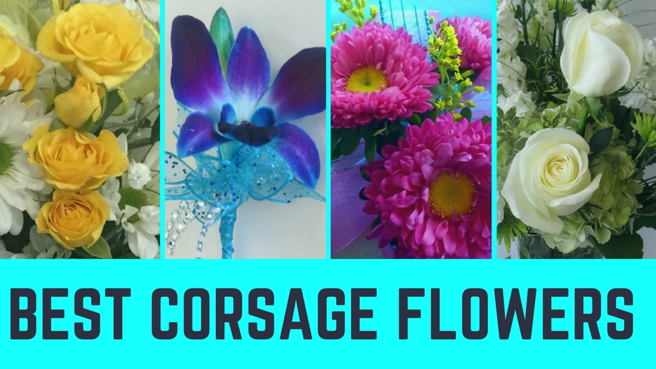 My Prom Corsage Flower Ideas Houston Florist Corsages Youtube