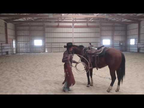 Chris Cox Apprenticeship Video (Horse Work)