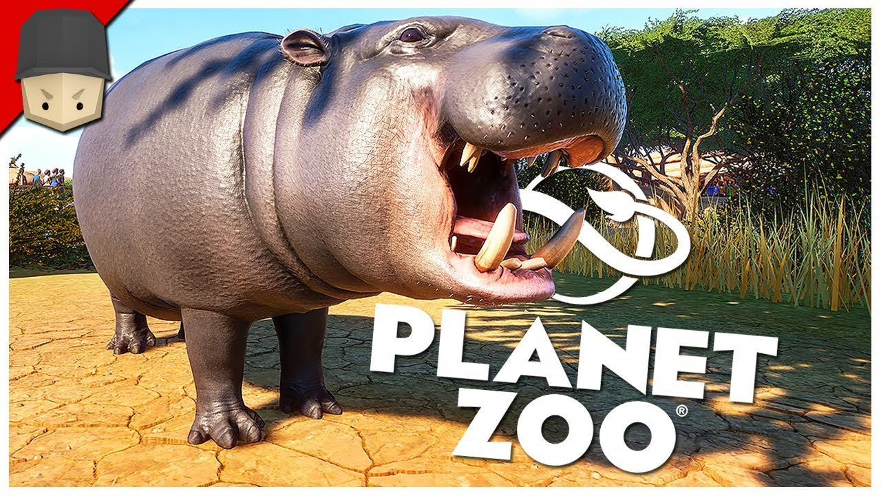 Download Planet Zoo - Ep.02 : HIPPOPOTAMUS ENCLOSURE!