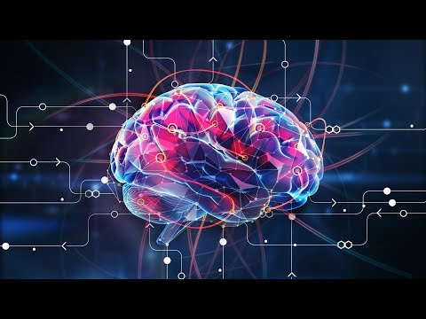 What Is Intelligence? - Infinite Intelligence Explained